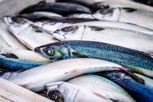 Truques para escolher o peixe mais fresco