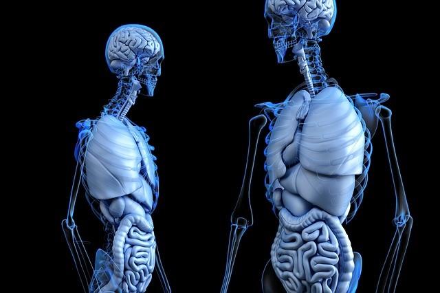 doenças do fígado