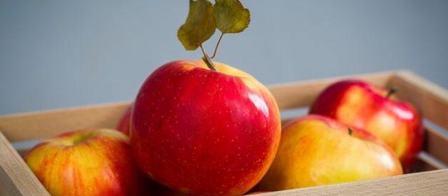 Doenças transmitidas pelos alimentos