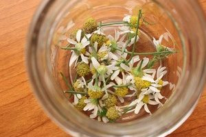 remédios caseiros contra a tosse