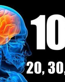 10% do cérebro