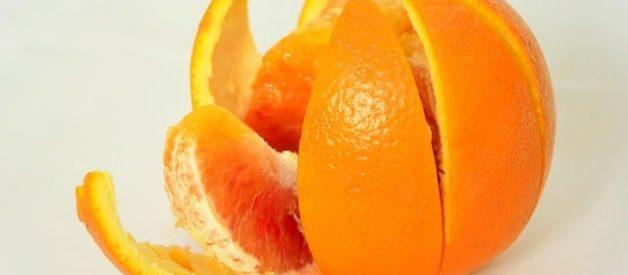 cascas da fruta