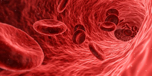 aumentar hemoglobina rapidamente