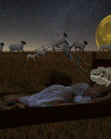 Dicas para dormir bem
