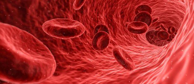 anemia perniciosa