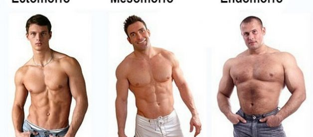 Mesomorfo, Ectomorfo ou Endomorfo