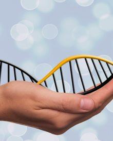 Como a Genética Afeta a Sua Saúde