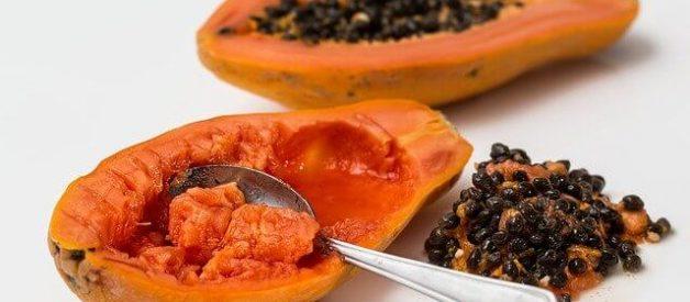 fermentado de papaia